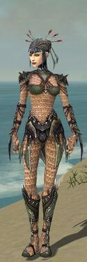 Necromancer Elite Cabal Armor F gray front