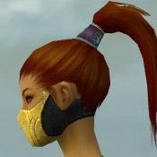 File:Assassin Kurzick Armor F dyed head side.jpg