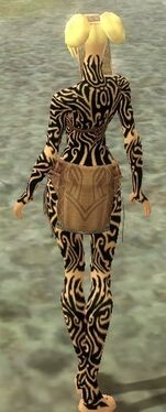 Monk Flowing Armor F dyed back