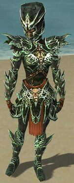 Warrior Elite Luxon Armor F dyed front
