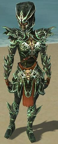 File:Warrior Elite Luxon Armor F dyed front.jpg