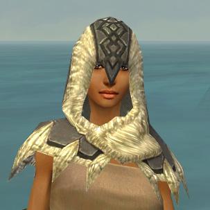 File:Dervish Norn Armor F gray head front.jpg