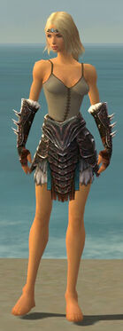 Warrior Norn Armor F gray arms legs front