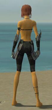 Assassin Luxon Armor F gray arms legs back