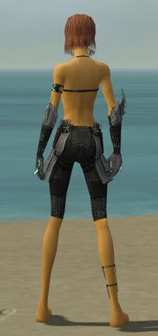 File:Assassin Luxon Armor F gray arms legs back.jpg