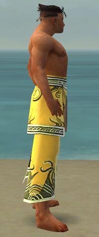 File:Aureate Pants M dyed side.jpg