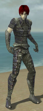 Necromancer Ascalon Armor M gray front