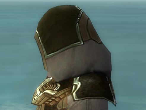 File:Dervish Asuran Armor M gray head side.jpg