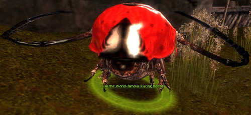 File:Lisa the World-Famous Racing Beetle.jpg