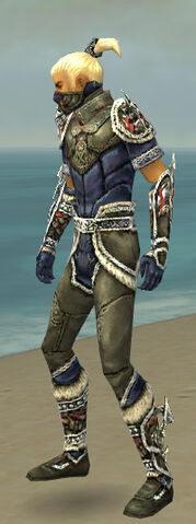File:Assassin Norn Armor M gray side.jpg