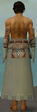 Dervish Istani Armor M gray arms legs back