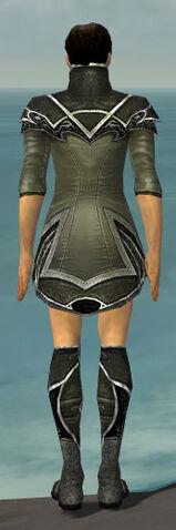 File:Elementalist Shing Jea Armor M gray chest feet back.jpg