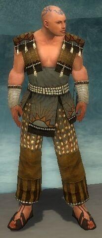 File:Monk Sunspear Armor M gray front.jpg