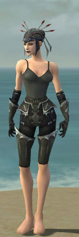 File:Necromancer Tyrian Armor F gray arms legs front.jpg