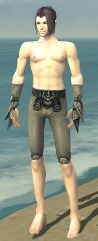 File:Elementalist Asuran Armor M gray arms legs front.jpg