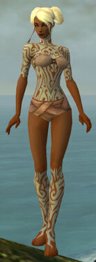 Monk Flowing Armor F gray chest feet front