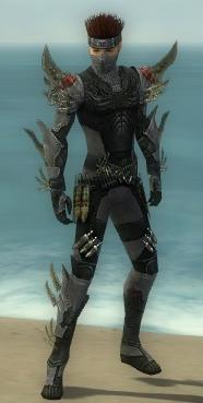 Assassin Elite Imperial Armor M gray front