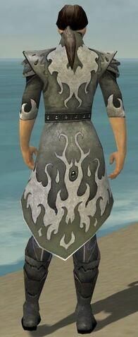 File:Elementalist Elite Flameforged Armor M gray chest feet back.jpg