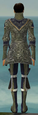 Elementalist Canthan Armor M gray back