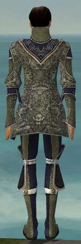 File:Elementalist Canthan Armor M gray back.jpg