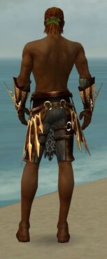 Ranger Elite Sunspear Armor M gray arms legs back
