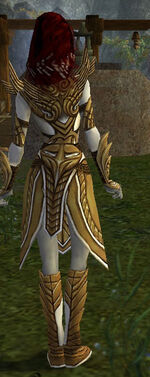 Hayda Armor Deldrimor Back