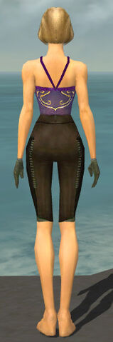 File:Mesmer Istani Armor F gray arms legs back.jpg