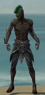 Necromancer Elite Necrotic Armor M gray arms legs front