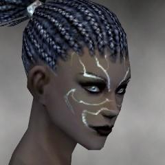 File:Necromancer Primeval Armor F gray head side.jpg