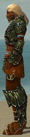 File:Ranger Elite Luxon Armor M dyed side.jpg
