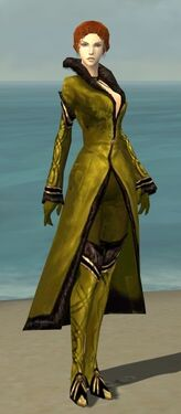 Mesmer Norn Armor F dyed front