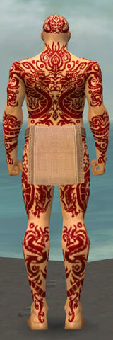 File:Monk Dragon Armor M dyed back.jpg