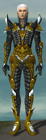 File:Necromancer Profane Armor M dyed front.jpg