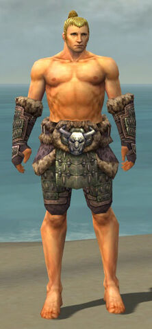 File:Warrior Charr Hide Armor M gray arms legs front.jpg
