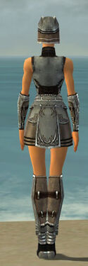 Warrior Istani Armor F gray back
