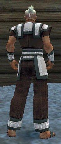 File:Monk Elite Woven Armor M gray back.jpg