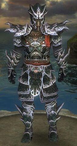 File:Armor W 15k Luxon M Undye Full.jpg