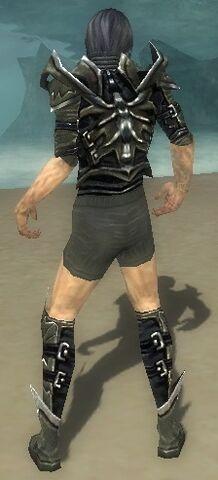 File:Necromancer Elite Profane Armor M gray chest feet back.jpg
