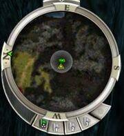 New compass