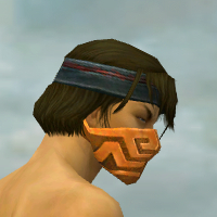 File:Assassin Elite Canthan Armor M dyed head side.jpg