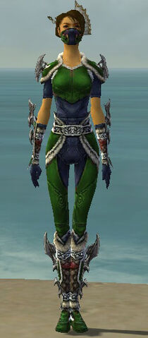 File:Assassin Norn Armor F dyed front.jpg