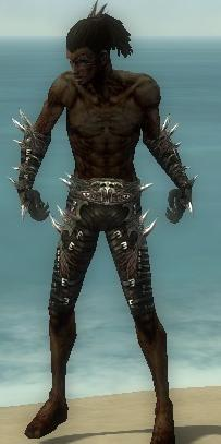 File:Necromancer Elite Canthan Armor M gray arms legs front.jpg