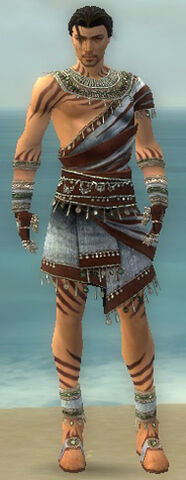 File:Ritualist Exotic Armor M gray front.jpg