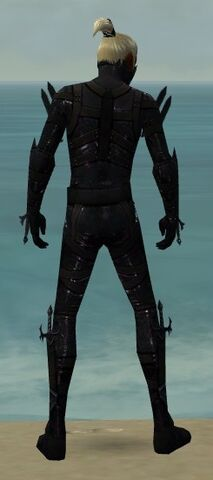 File:Assassin Obsidian Armor M dyed back.jpg