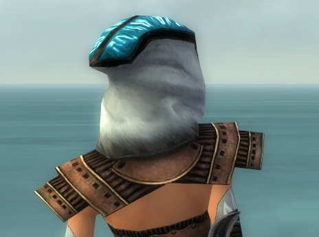 File:Dervish Monument Armor F dyed head back.jpg
