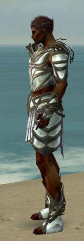 File:Paragon Primeval Armor M gray side.jpg