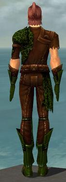 Ranger Istani Armor M dyed back