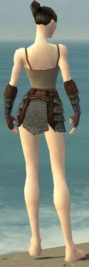 Warrior Krytan Armor F gray arms legs back