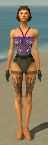 File:Mesmer Primeval Armor F gray arms legs front.jpg