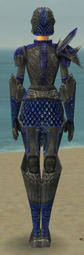 Warrior Elite Platemail Armor F dyed back